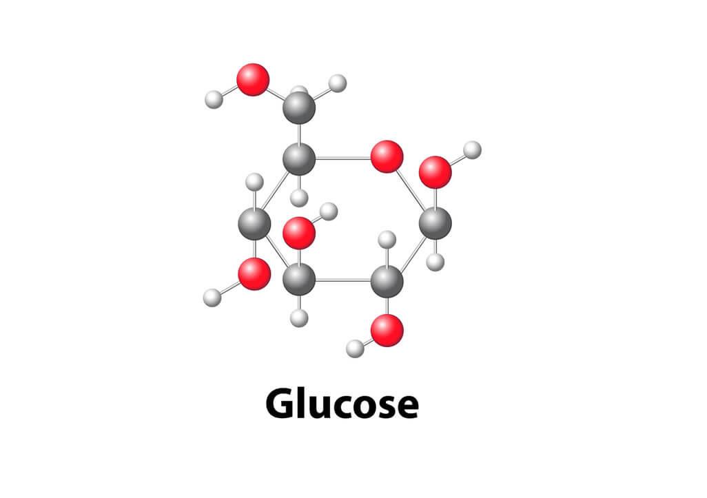 睡眠不足の影響で筋グリコーゲンが低下